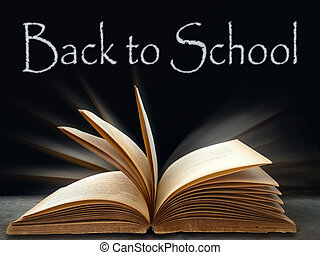 schule, schwarz, zurück ausschuß