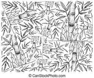 schuss, frisch, bambus, weißer hintergrund