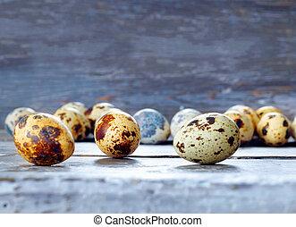 schuur, eitjes, fris, kwartel, pasen, rustiek, wachten