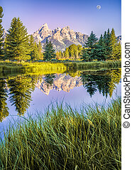 The Teton range's reflection upon the Snake River after dawn at Schwabacher Landing in Grand Teton National Park, WY