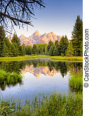 The Teton range's reflection upon the Snake River. Photographed at dawn at Schwabacher Landing in Grand Teton National Park, WY