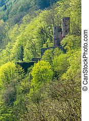 Schwalbennest castle outside Neckarsteinach