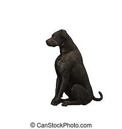 schwarz, 01, -, labradorhundapportierhund