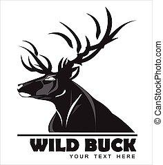 schwarz, rehbock, wild