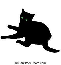 schwarz, silhouette, katz