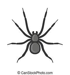 spinne spider freigestellt abbildung hintergrund vektor wei es. Black Bedroom Furniture Sets. Home Design Ideas