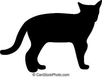 schwarz, vektor, silhouette, illustration., cat.