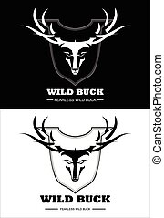 schwarz, weißes, rehbock, wild