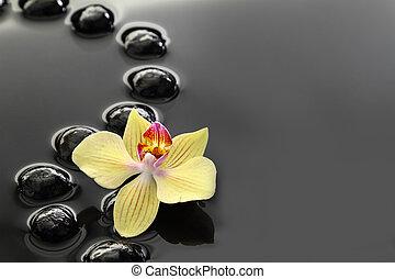 schwarz, zen, steine, und, orchidee, auf, ruhiges wasser,...
