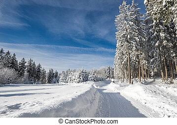 Schwarzwald - Winterlandschaft, aufgenommen in...