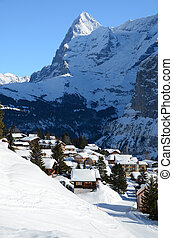schweizerisch, berühmt, muerren, ski fahrend, cluburlaub