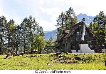 schweizerisch, landhaus