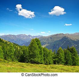 schweizisk, landskab, sommer, alperne