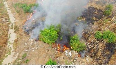 schwer, Felder, brennender, rauchwolken
