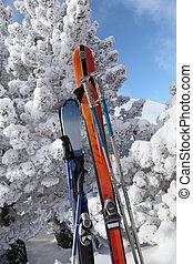 sciare, apparecchiatura