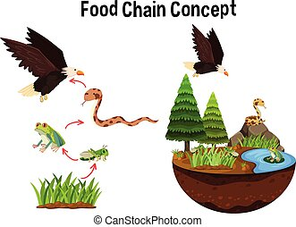 Science Food Chain Concept illustration