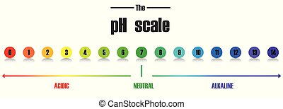 Science pH scale template illustration