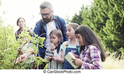 science., tanár, elgáncsol, csoport, mező, tanulás,...