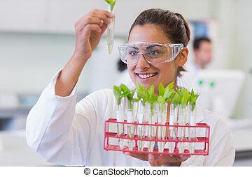 scientifique, analyser, laboratoire, femme, usines, jeune