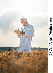 scientifique, nouveau, agricole, grain, données, poursuite, race