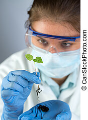 scientist and green plant