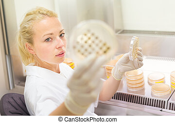 Scientist observing petri dish. - Female life science...