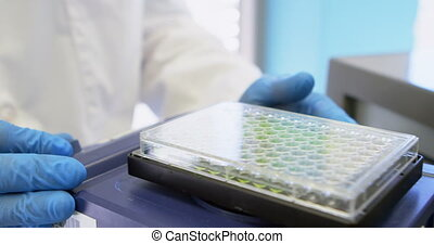Scientist shaking microplate on orbital shakers 4k -...