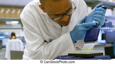 Scientist using multi channel pipette 4k - Scientist using...