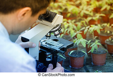 Scientist with microscope in green house - Close up of...