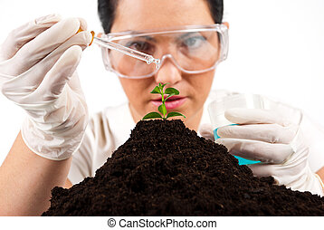 Scientist woman working - Close up of agricultural scientist...