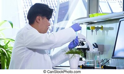 Scientist working in lab. Asian doctor making medical...