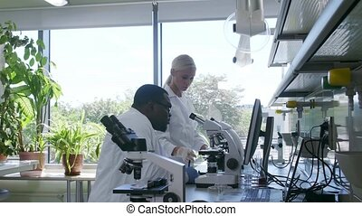 Scientist working in lab. Doctors making medical research. ...