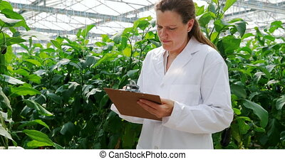 Scientist writing on the clipboard in the greenhouse 4k - ...