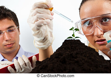Scientists agricultural people - Two scientists agricultural...