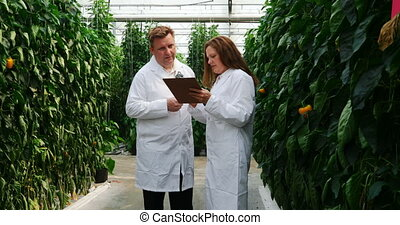 Scientists discussing over clipboard in the greenhouse 4k - ...