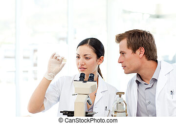Scientists looking at a slide under a microscope - Young...