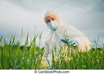 Scientistsits on summer field
