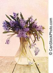 scilla in vase, vintage