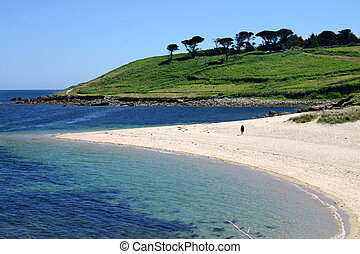 scilly, st. 。, pelistry, メアリーの, 島, 浜