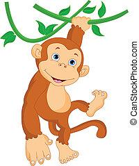 scimmia, carino, appendere