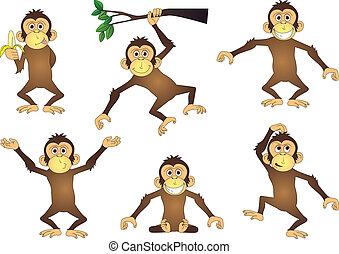 scimmia, cartone animato, collezione