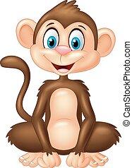 scimmia, cartone animato, seduta