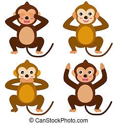 scimmia, no, -, male, vedere, sentire, parlare