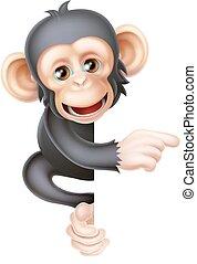 scimpanzé, cartone animato, indicare, scimmia