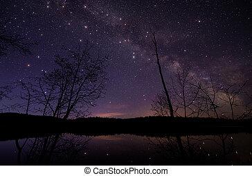 scintillement, grand, étoiles, manière, laiteux