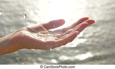 scintillements, palm., arrière-plan., main, a entouré, ...