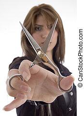 scissor, het tonen, vrouwlijk