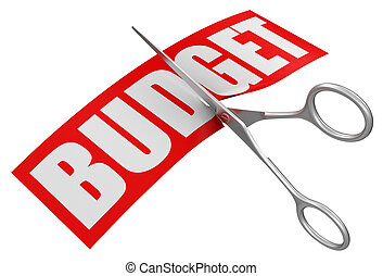 Scissors and budget