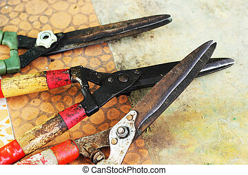 Scissors cut grass laying on the cement floor.
