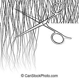 Scissors cut hair
